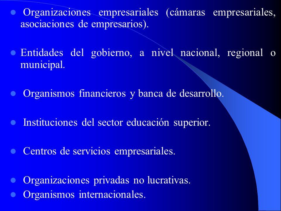 3.2 La participación de los agentes económicos locales 3.2 La participación de los agentes económicos locales Los agentes económicos locales están int