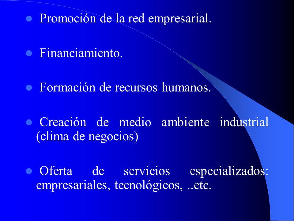 Cada uno de estos agentes económicos puede tener un interés especifico en apoyar el desarrollo de redes empresariales en base de su misión, objetivos,