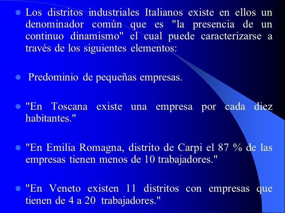 Los distritos industriales Italianos existe en ellos un denominador común que es la presencia de un continuo dinamismo el cual puede caracterizarse a través de los siguientes elementos: Predominio de pequeñas empresas.
