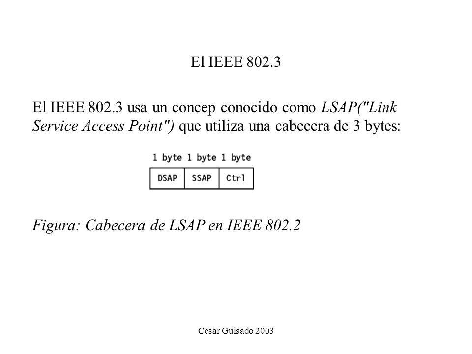 Cesar Guisado 2003 El IEEE 802.3 El IEEE 802.3 usa un concep conocido como LSAP( Link Service Access Point ) que utiliza una cabecera de 3 bytes: Figura: Cabecera de LSAP en IEEE 802.2