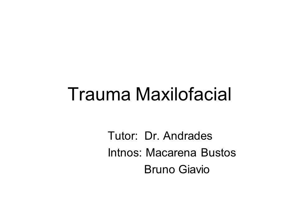 Trauma Maxilofacial Tutor: Dr. Andrades Intnos: Macarena Bustos Bruno Giavio