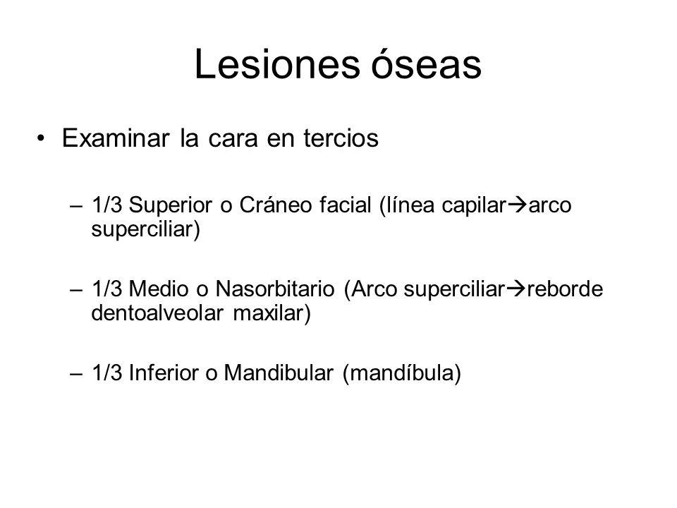 Lesiones óseas Examinar la cara en tercios –1/3 Superior o Cráneo facial (línea capilar arco superciliar) –1/3 Medio o Nasorbitario (Arco superciliar