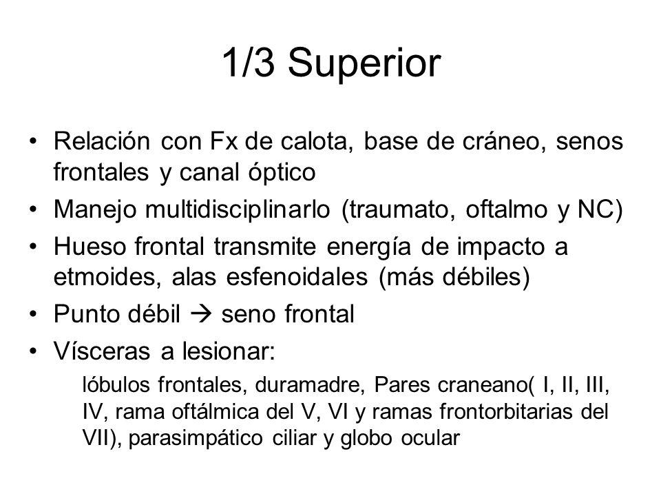 1/3 Superior Relación con Fx de calota, base de cráneo, senos frontales y canal óptico Manejo multidisciplinarlo (traumato, oftalmo y NC) Hueso fronta