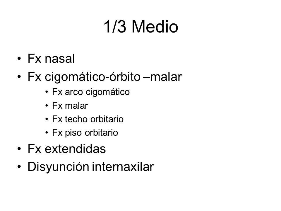 1/3 Medio Fx nasal Fx cigomático-órbito –malar Fx arco cigomático Fx malar Fx techo orbitario Fx piso orbitario Fx extendidas Disyunción internaxilar