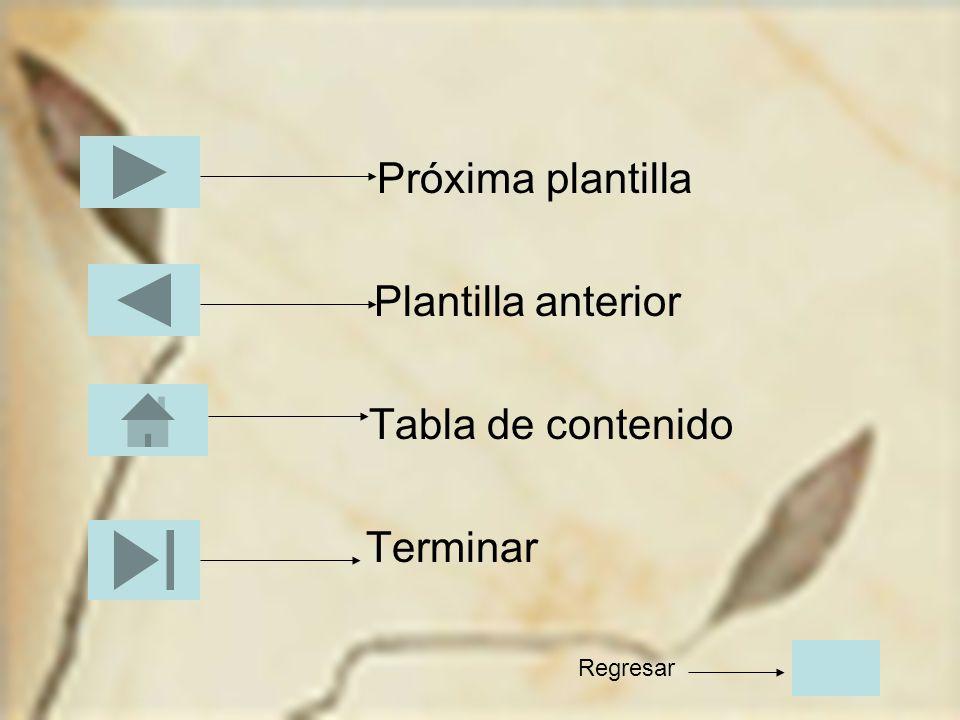 Próxima plantilla Plantilla anterior Tabla de contenido Terminar Regresar