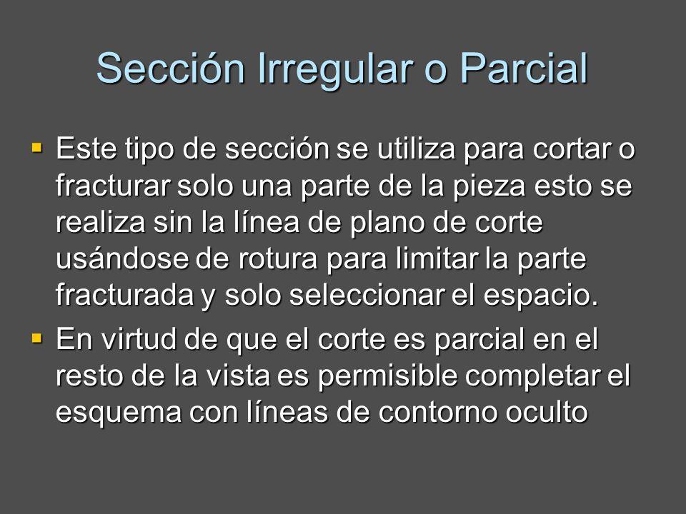 Sección Irregular o Parcial Este tipo de sección se utiliza para cortar o fracturar solo una parte de la pieza esto se realiza sin la línea de plano de corte usándose de rotura para limitar la parte fracturada y solo seleccionar el espacio.