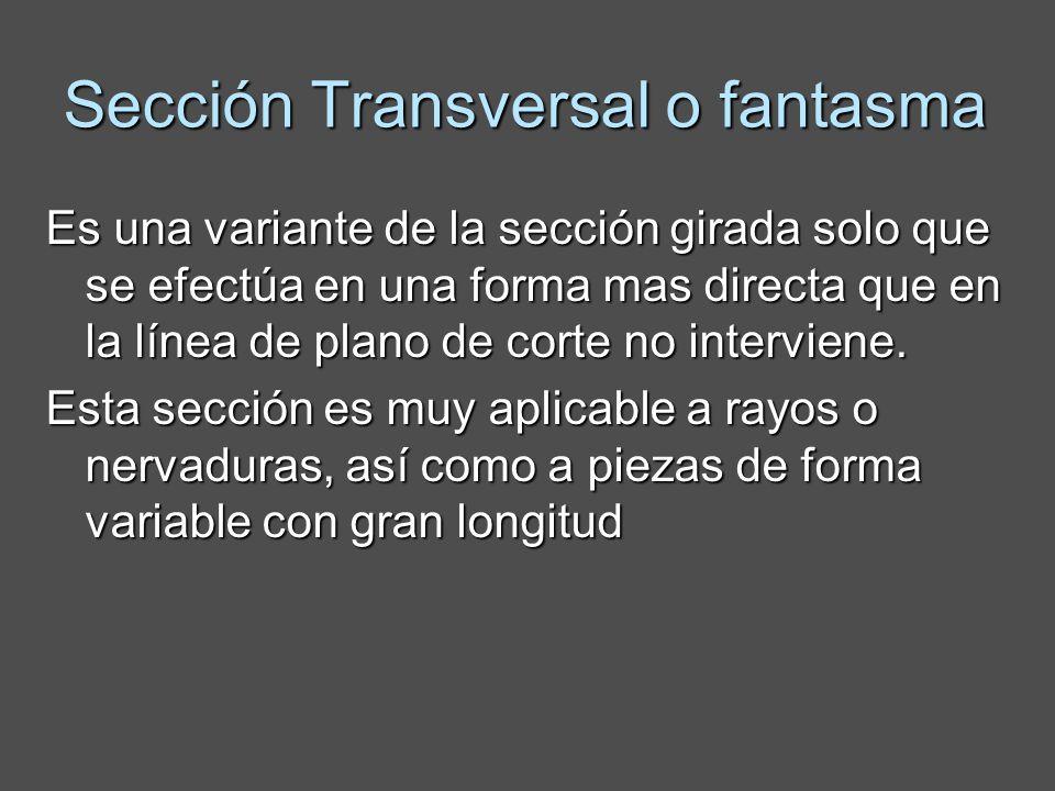Sección Transversal o fantasma Es una variante de la sección girada solo que se efectúa en una forma mas directa que en la línea de plano de corte no interviene.