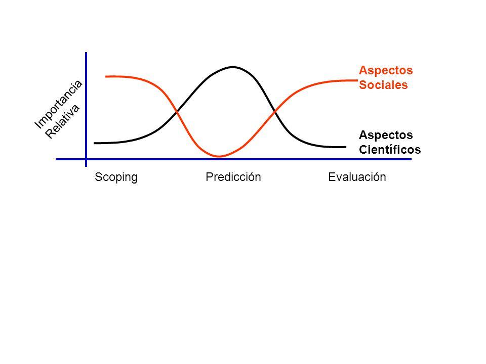 ScopingPredicciónEvaluación Aspectos Sociales Aspectos Científicos Importancia Relativa