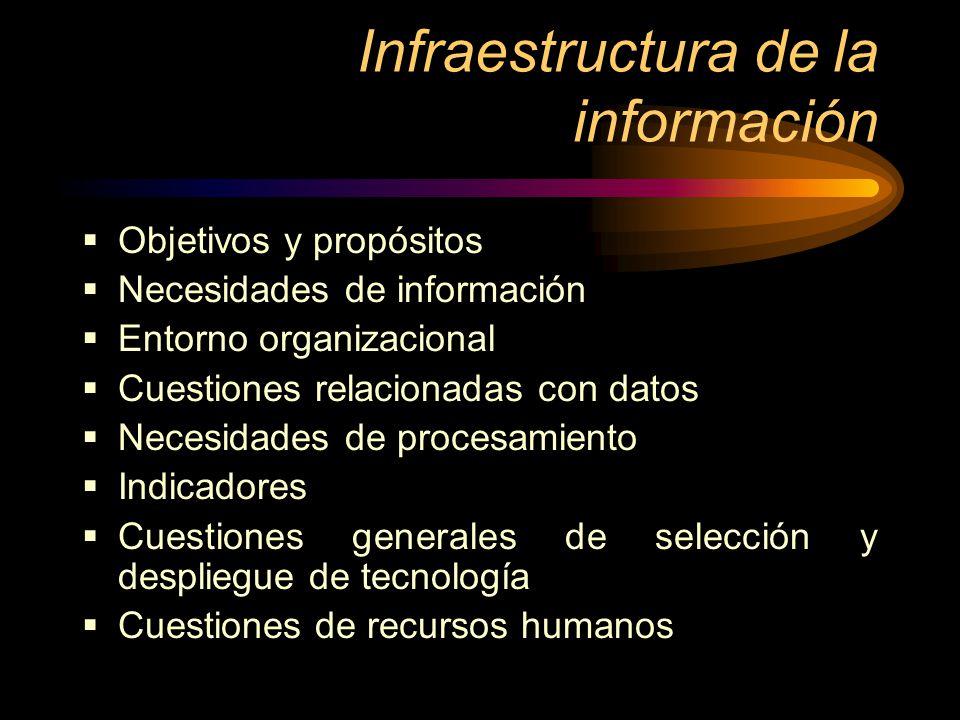 Infraestructura de la información Objetivos y propósitos Necesidades de información Entorno organizacional Cuestiones relacionadas con datos Necesidad