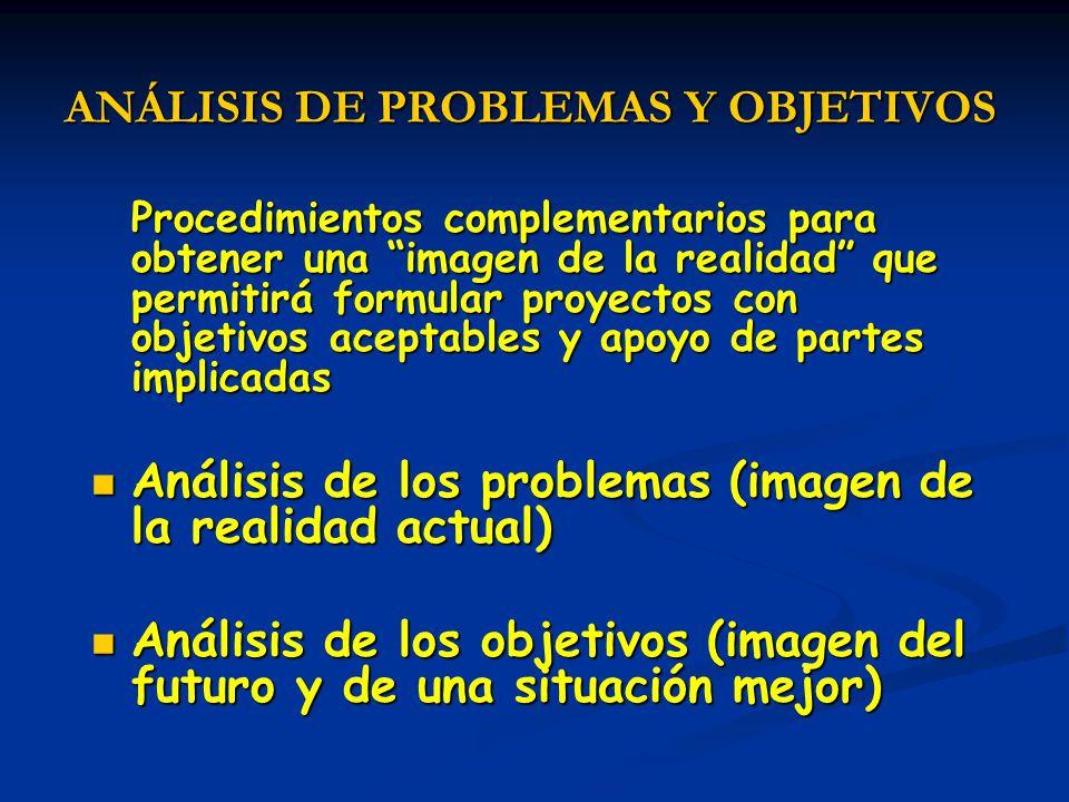 ANÁLISIS DE PROBLEMAS Y OBJETIVOS Procedimientos complementarios para obtener una imagen de la realidad que permitirá formular proyectos con objetivos