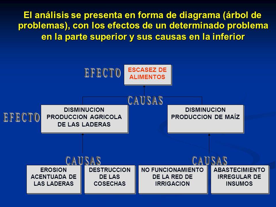 El análisis se presenta en forma de diagrama (árbol de problemas), con los efectos de un determinado problema en la parte superior y sus causas en la