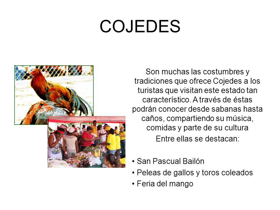 COJEDES Son muchas las costumbres y tradiciones que ofrece Cojedes a los turistas que visitan este estado tan característico. A través de éstas podrán
