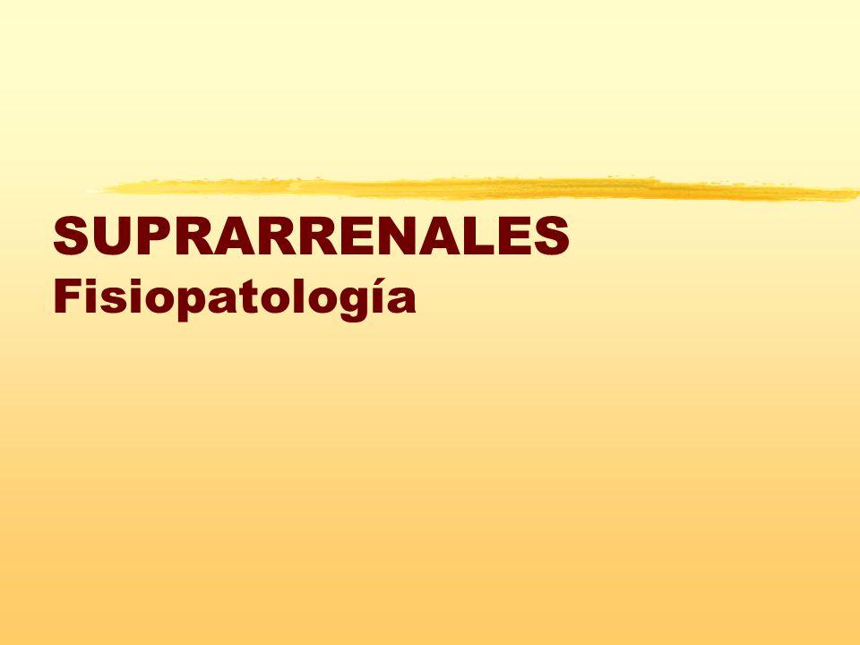 SUPRARRENALES Fisiopatología