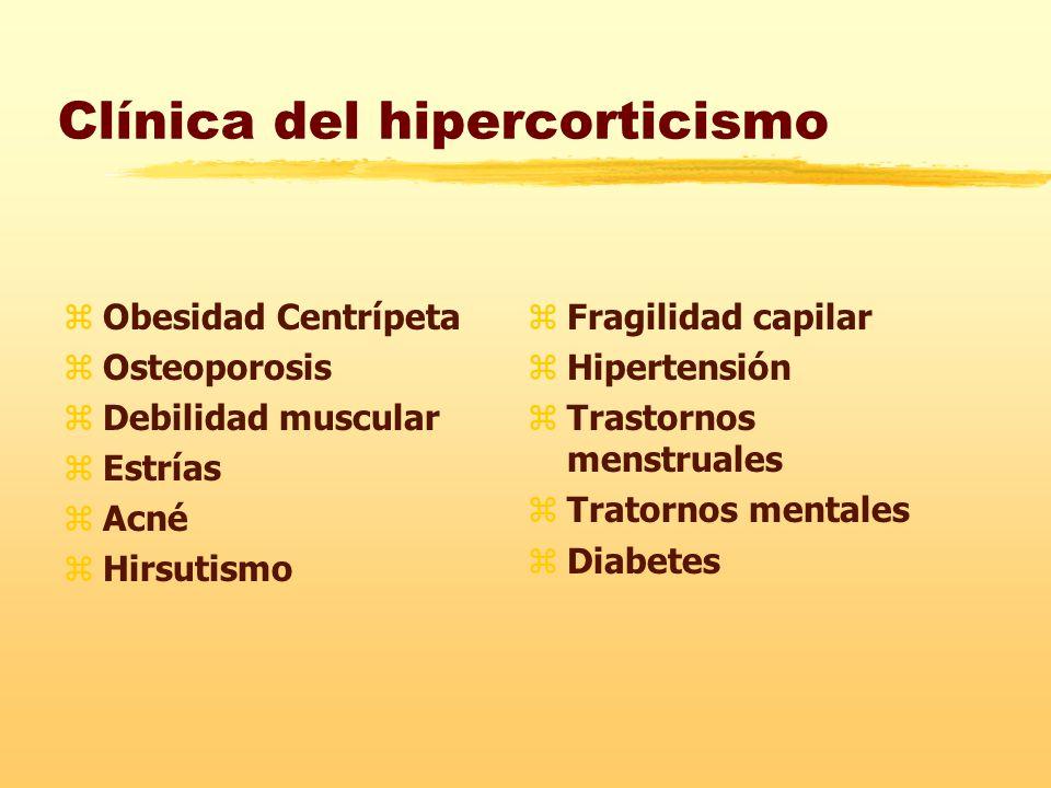 Clínica del hipercorticismo zObesidad Centrípeta zOsteoporosis zDebilidad muscular zEstrías zAcné zHirsutismo z Fragilidad capilar z Hipertensión z Trastornos menstruales z Tratornos mentales z Diabetes