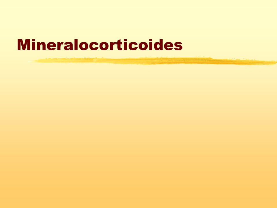 Mineralocorticoides