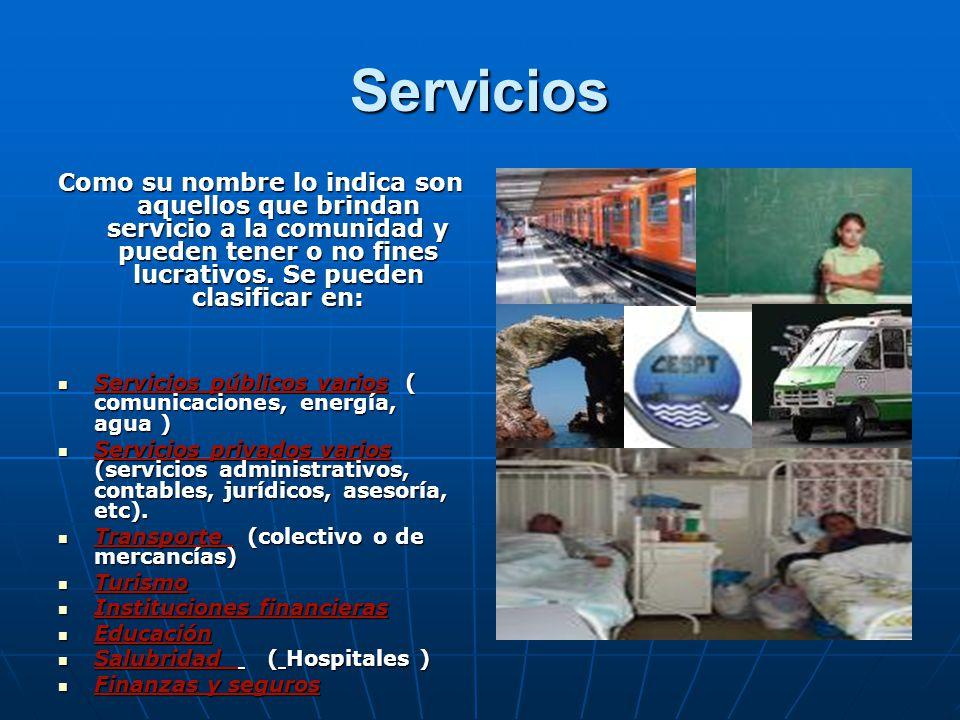 Servicios Como su nombre lo indica son aquellos que brindan servicio a la comunidad y pueden tener o no fines lucrativos.