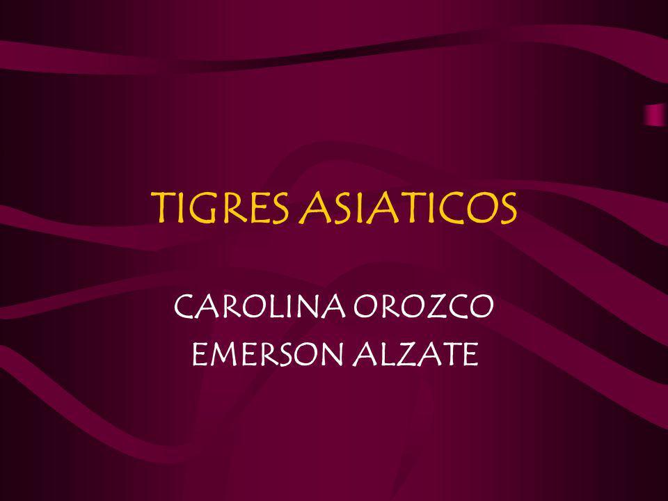 TIGRES ASIATICOS CAROLINA OROZCO EMERSON ALZATE