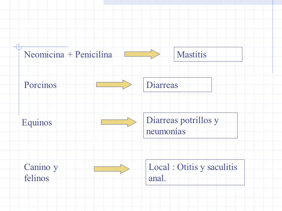 Neomicina + Penicilina Mastitis Porcinos Diarreas Equinos Diarreas potrillos y neumonías Local : Otitis y saculitis anal. Canino y felinos