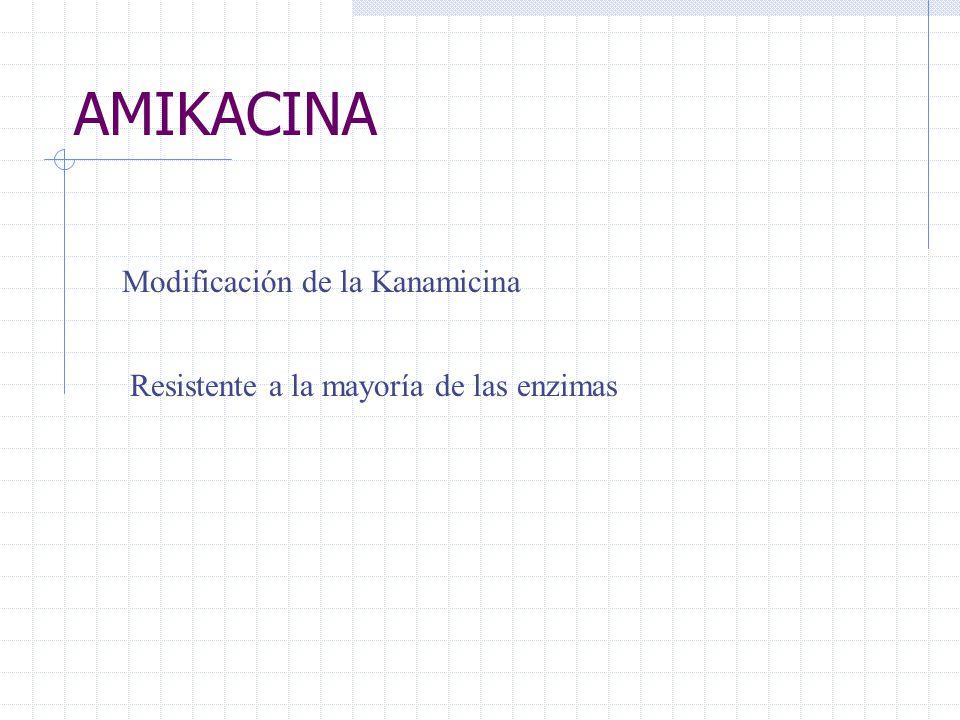 AMIKACINA Modificación de la Kanamicina Resistente a la mayoría de las enzimas