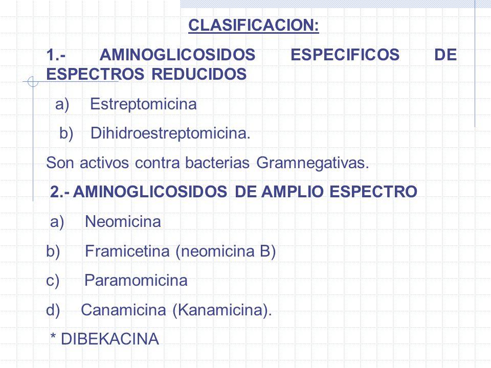CLASIFICACION: 1.- AMINOGLICOSIDOS ESPECIFICOS DE ESPECTROS REDUCIDOS a) Estreptomicina b) Dihidroestreptomicina. Son activos contra bacterias Gramneg