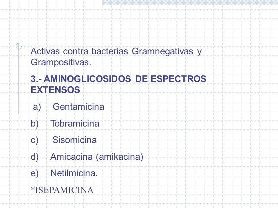Activas contra bacterias Gramnegativas y Grampositivas. 3.- AMINOGLICOSIDOS DE ESPECTROS EXTENSOS a) Gentamicina b) Tobramicina c) Sisomicina d) Amica