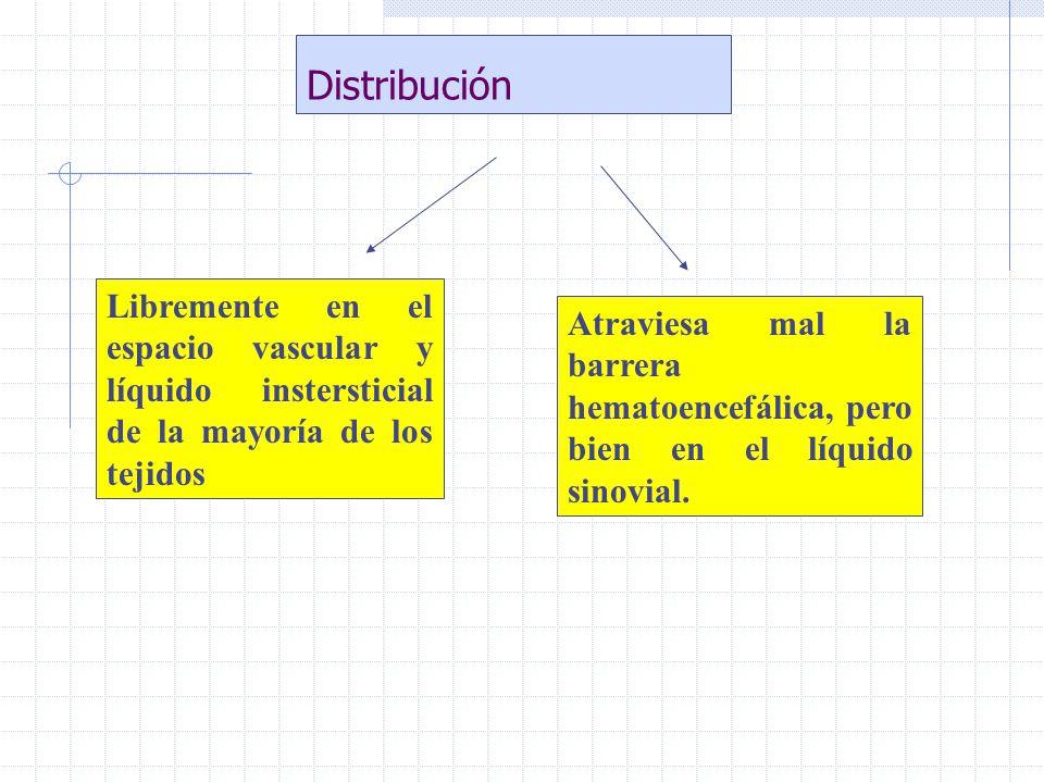 Distribución Libremente en el espacio vascular y líquido instersticial de la mayoría de los tejidos Atraviesa mal la barrera hematoencefálica, pero bi