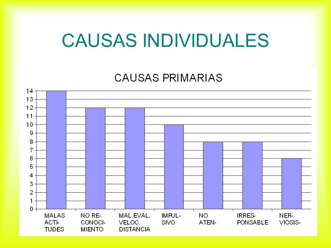CAUSAS INDIVIDUALES