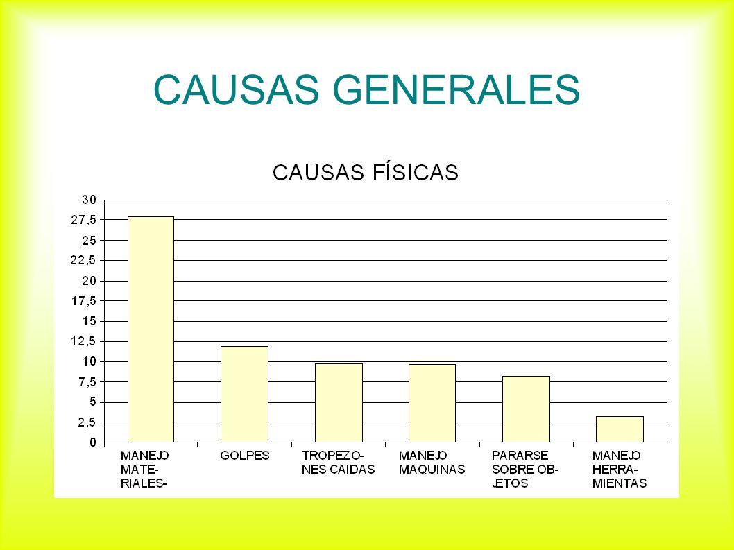 CAUSAS GENERALES