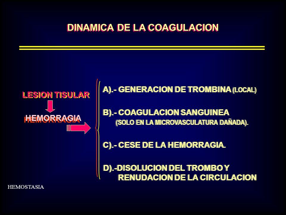 DINAMICA DE LA COAGULACION A).- GENERACION DE TROMBINA (LOCAL) B).- COAGULACION SANGUINEA (SOLO EN LA MICROVASCULATURA DAÑADA).
