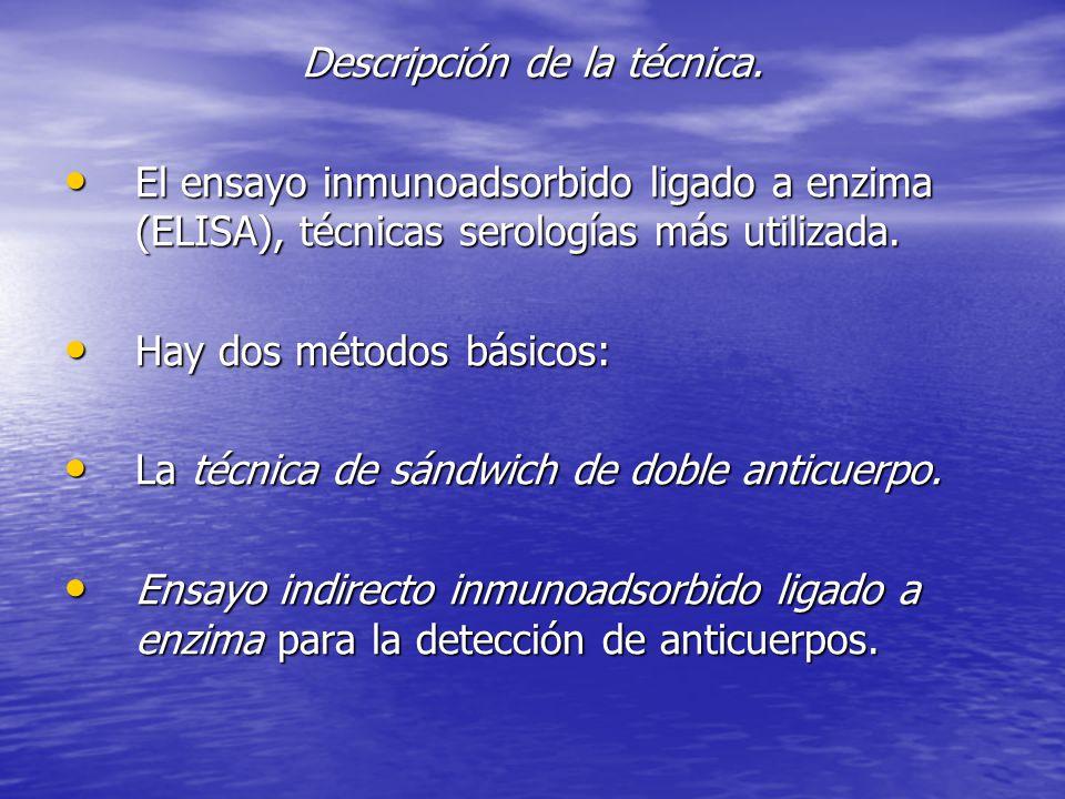 Descripción de la técnica.