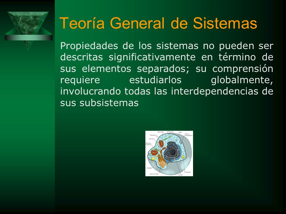 Teoría General de Sistemas La Teoría General de Sistemas (TGS) se distingue por su perspectiva integradora, donde se considera importante la interacci