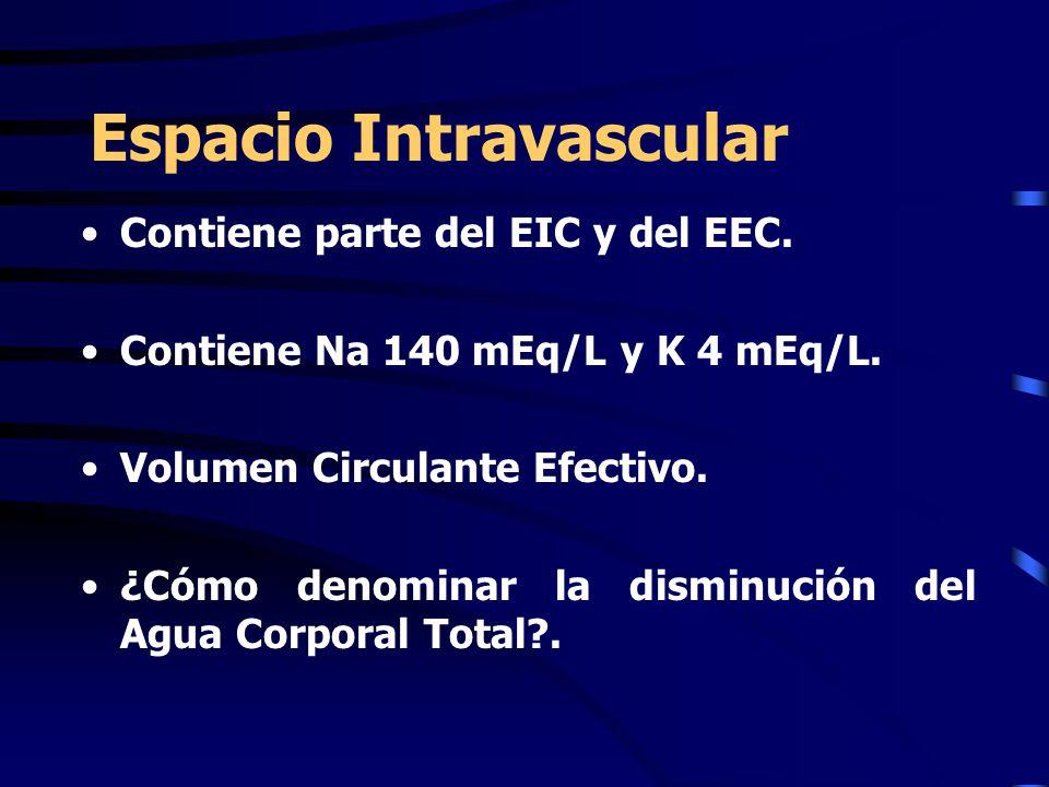Contiene parte del EIC y del EEC. Contiene Na 140 mEq/L y K 4 mEq/L. Volumen Circulante Efectivo. ¿Cómo denominar la disminución del Agua Corporal Tot