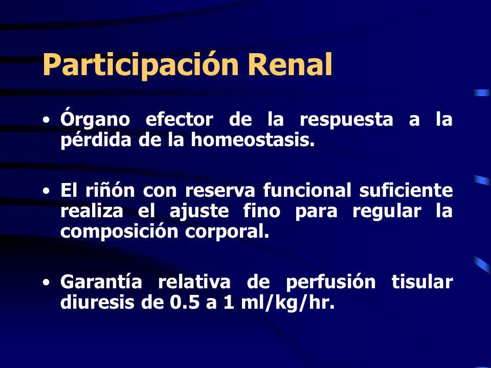 Participación Renal Órgano efector de la respuesta a la pérdida de la homeostasis. El riñón con reserva funcional suficiente realiza el ajuste fino pa