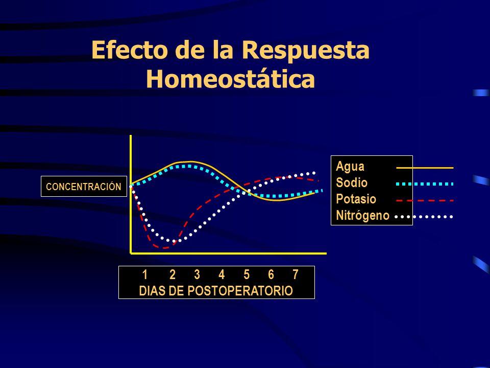 Efecto de la Respuesta Homeostática Agua Sodio Potasio Nitrógeno 1 2 3 4 5 6 7 DIAS DE POSTOPERATORIO CONCENTRACIÓN