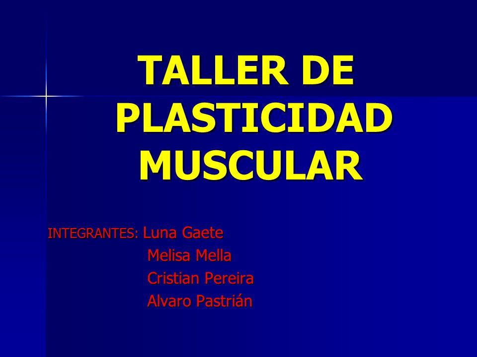 Plasticidad muscular.La unidad básica y funcional del tejido muscular es la sarcómera.