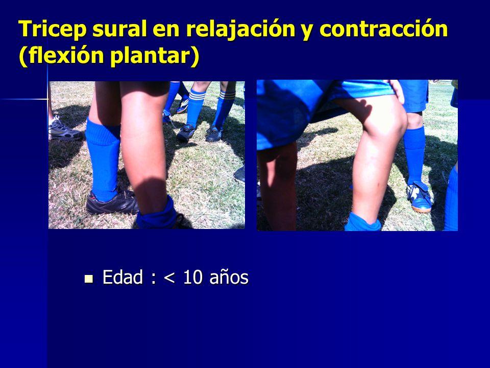Tricep sural en relajación y contracción (flexión plantar) Edad : < 10 años Edad : < 10 años