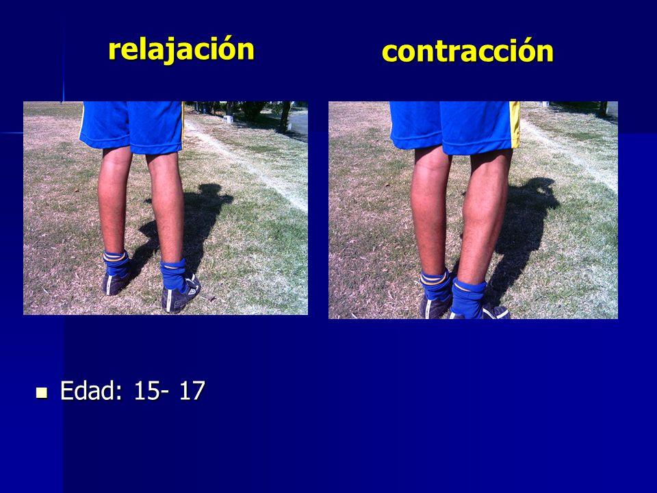 Edad: 15- 17 Edad: 15- 17 contracción relajación