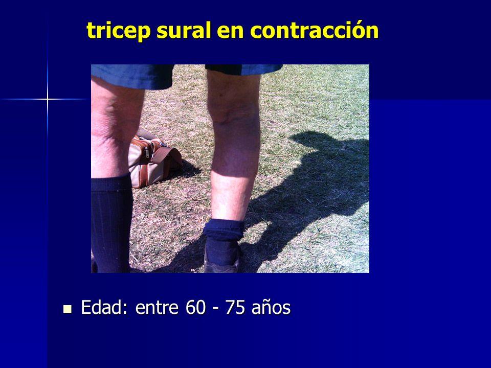 tricep sural en contracción tricep sural en contracción Edad: entre 60 - 75 años Edad: entre 60 - 75 años