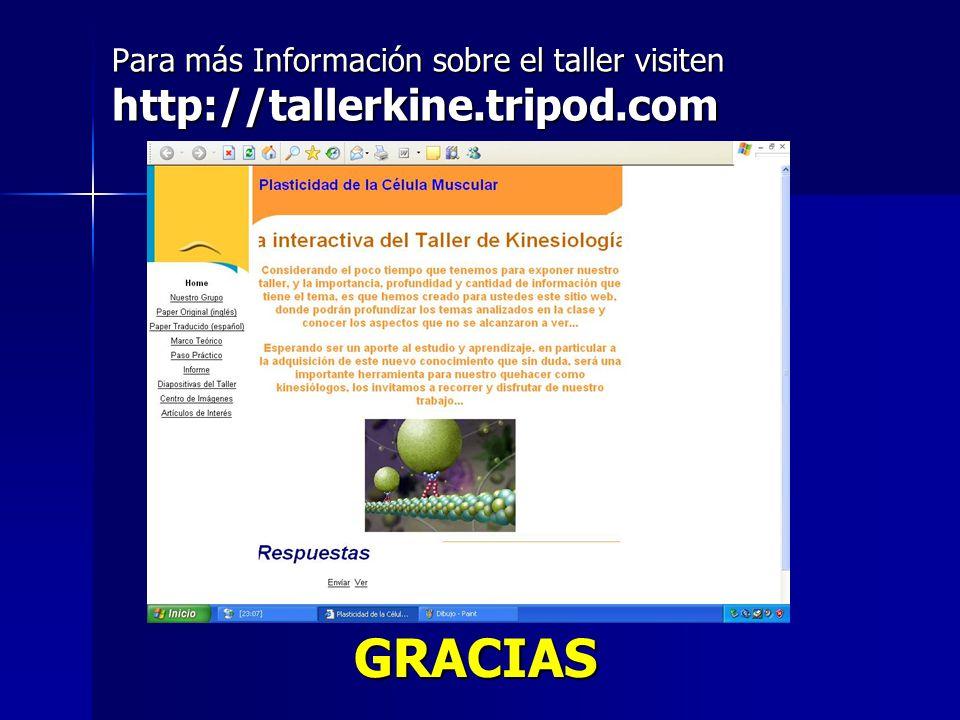 Para más Información sobre el taller visiten http://tallerkine.tripod.com GRACIAS