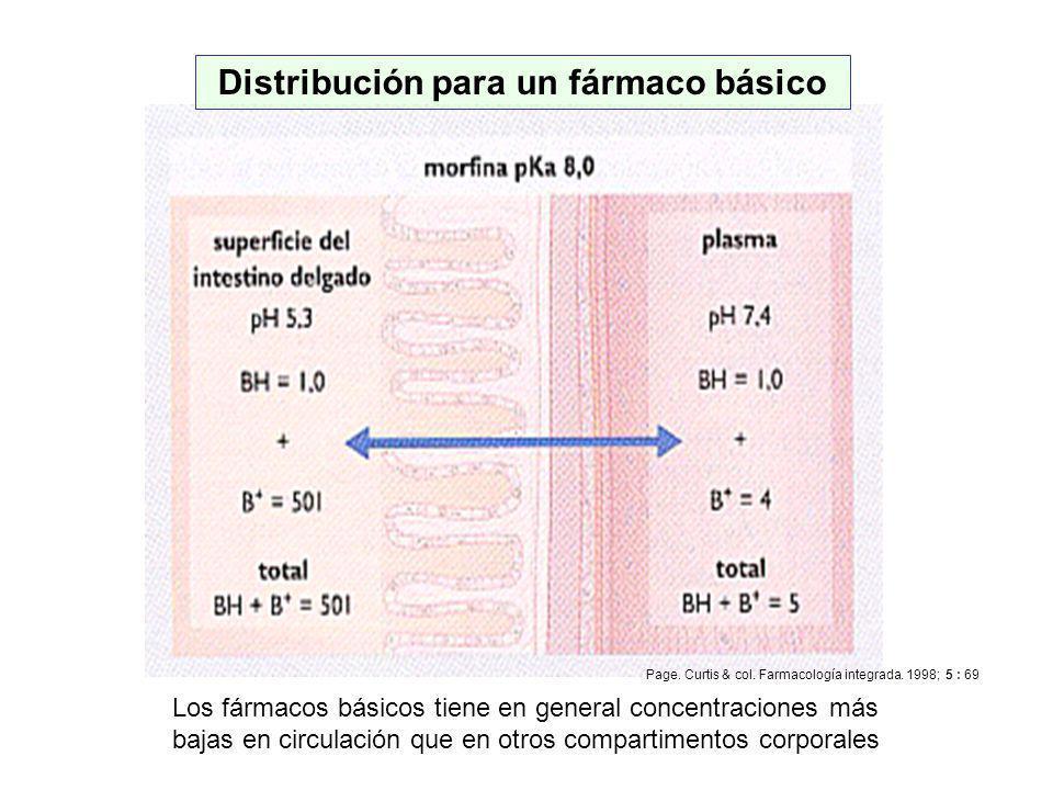 Q.F. Omar Santa María Chávez Distribución para un fármaco básico Los fármacos básicos tiene en general concentraciones más bajas en circulación que en
