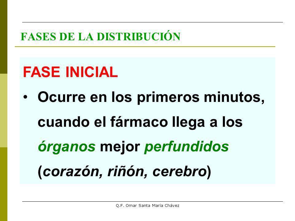 Q.F. Omar Santa María Chávez FASES DE LA DISTRIBUCIÓN FASE INICIAL Ocurre en los primeros minutos, cuando el fármaco llega a los órganos mejor perfund
