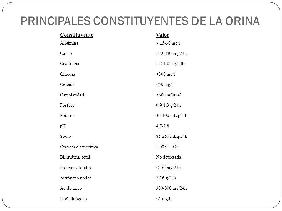 PRINCIPALES CONSTITUYENTES DE LA ORINA ConstituyenteValor Albúmina Calcio Creatinina Glucosa Cetonas Osmolaridad Fósforo Potasio pH Sodio Gravedad esp