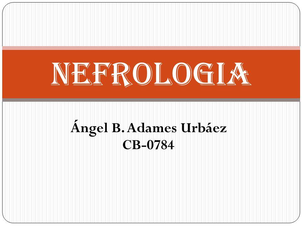 Ángel B. Adames Urbáez CB-0784 NEFROLOGIA