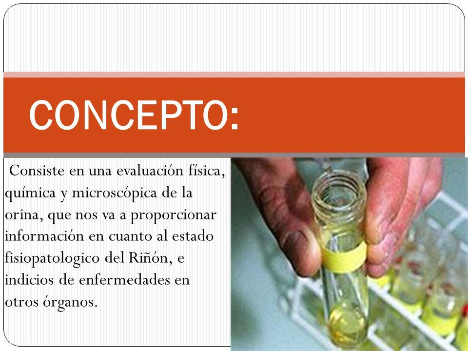 Consiste en una evaluación física, química y microscópica de la orina, que nos va a proporcionar información en cuanto al estado fisiopatologico del R