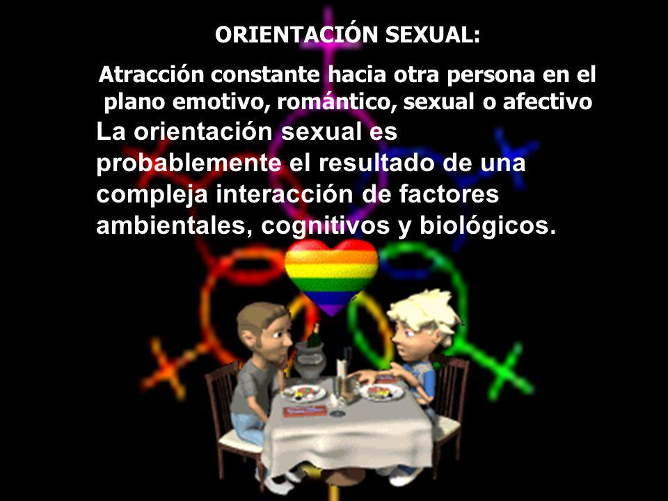 ORIENTACIÓN SEXUAL: Atracción constante hacia otra persona en el plano emotivo, romántico, sexual o afectivo La orientación sexual es probablemente el
