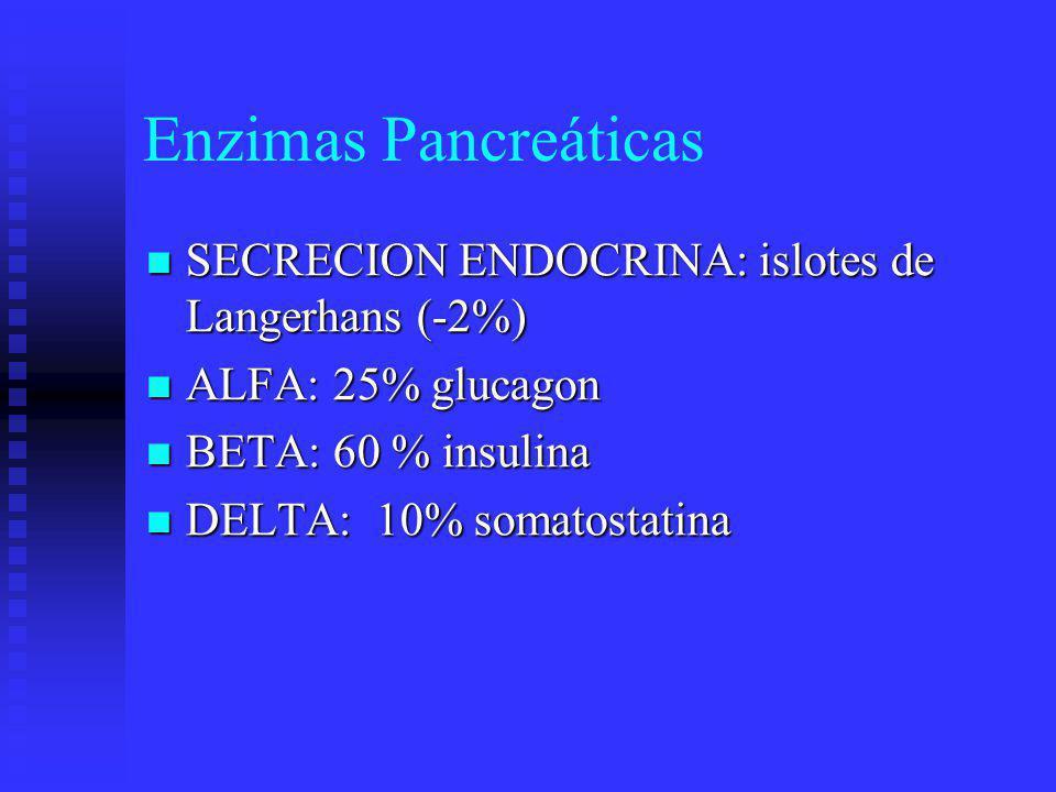 Enzimas Pancreáticas Secreción Exócrina: Zimógenos (Ach, CCK) Ductos pancreáticos: Moco, líquido alcalino (*) Enzimas digestivas: peptidasas, lipasas, amilasas, nucleasas.
