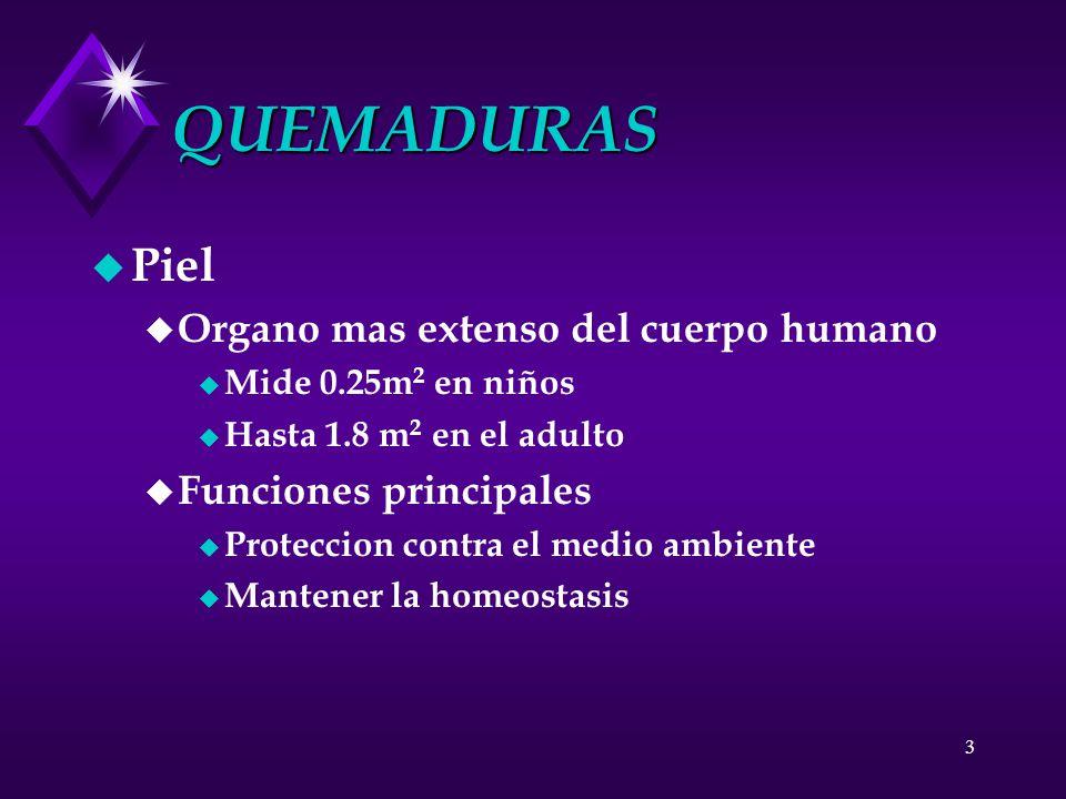 3 QUEMADURAS u Piel u Organo mas extenso del cuerpo humano u Mide 0.25m 2 en niños u Hasta 1.8 m 2 en el adulto u Funciones principales u Proteccion c