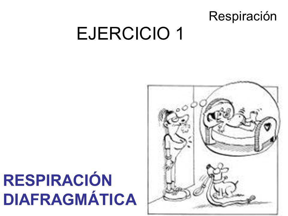 EJERCICIO 1 Respiración RESPIRACIÓN DIAFRAGMÁTICA