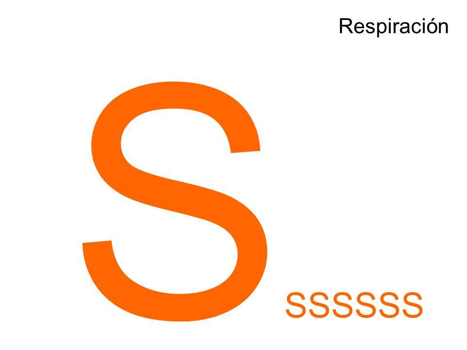 S SSSSSS
