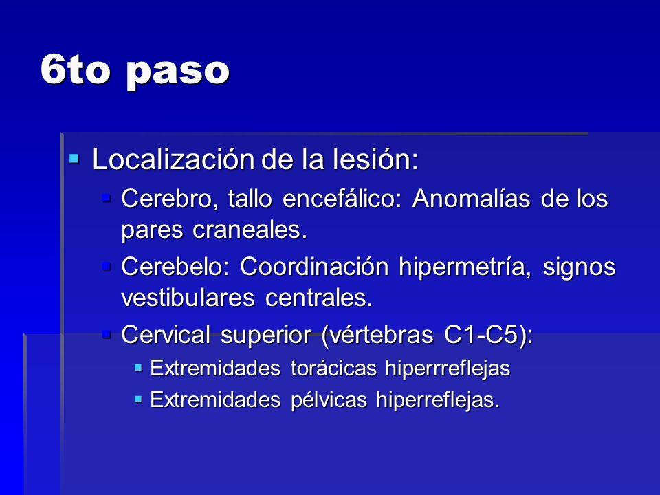 6to paso Localización de la lesión: Localización de la lesión: Cerebro, tallo encefálico: Anomalías de los pares craneales. Cerebro, tallo encefálico: